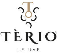 terio-le-uve-wines-italy
